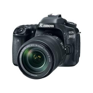 Canon EOS 80D with 18-135 nano USM